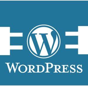 WordPress - почему мы его используем